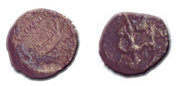 Иллирийские монеты из Рисана