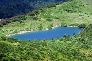 Урсуловачко озеро