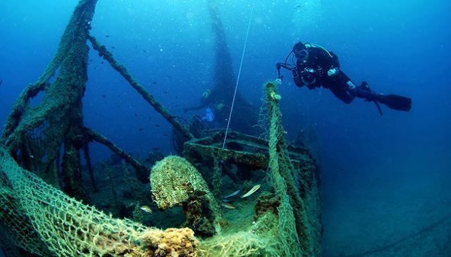 Dive 10_0
