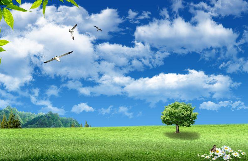 ekologija (2)