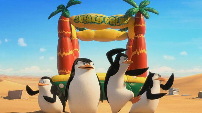 pingvini 00000