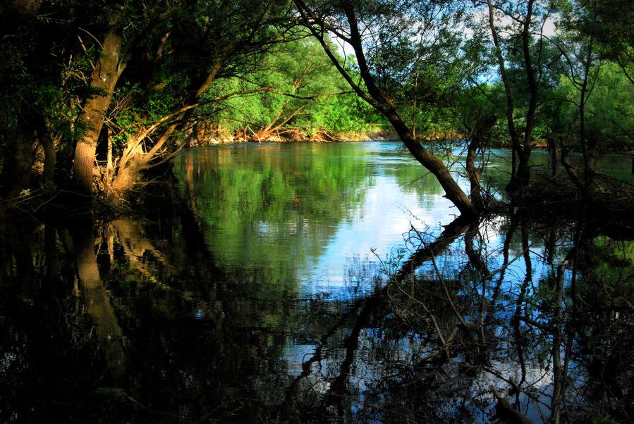 reka zeta